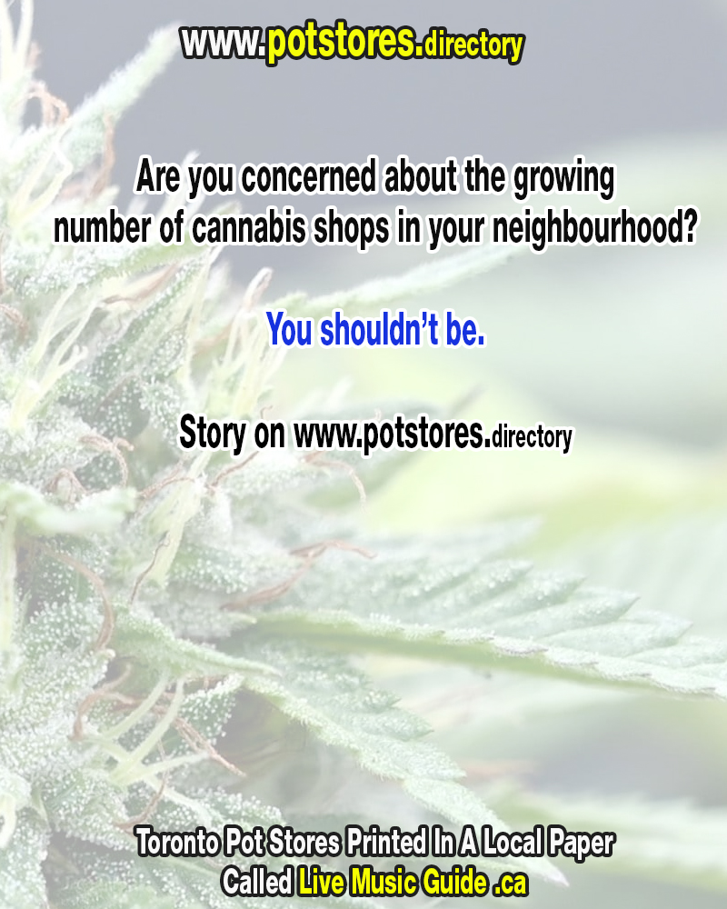 https://potstores.directory printed in LIVE MUSIC GUIDE newspaper Are you concerned about the growing number of cannabis shops in your neighbourhood?